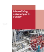 Liberalising Natural Gas in Turkey