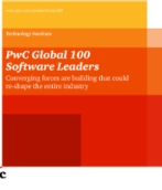 PwC Global 100 Software Leaders market research